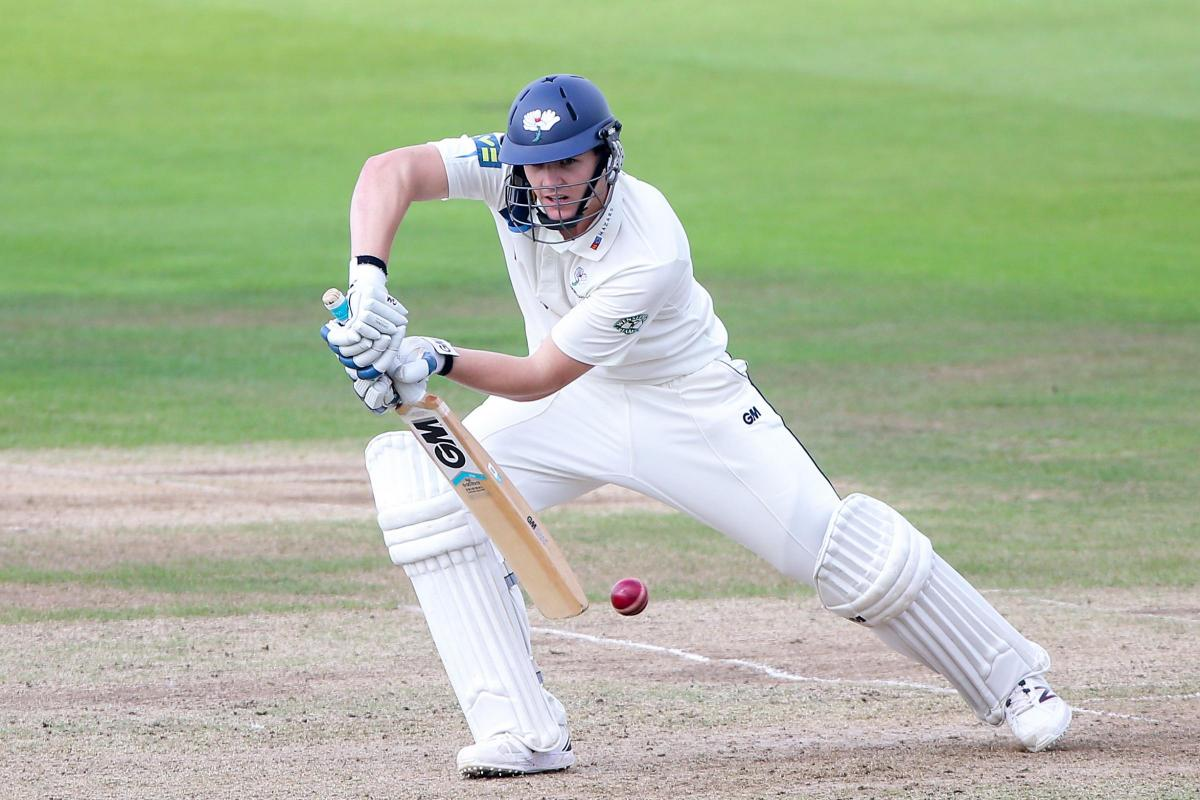 Lees Lashes Double-Hundred for Hoylandswaine - Match Day 7 Review