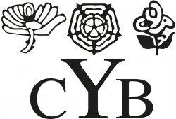 ycb_social_media